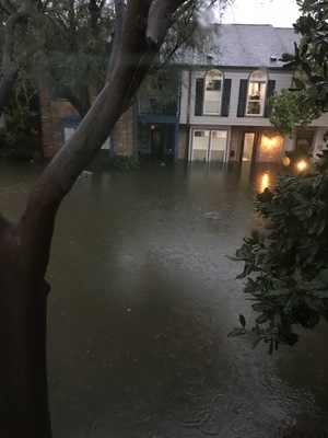Water Rising Outside of House