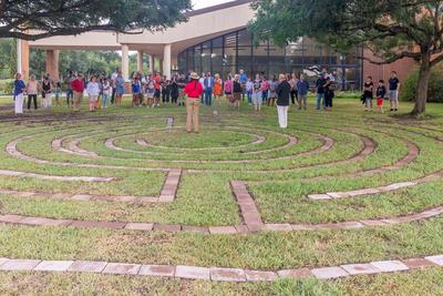 Labyrinth Wide shot